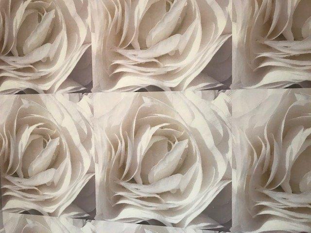 Candice Olson Wallpaper design