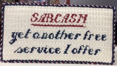 Sarcasm Needlepoint