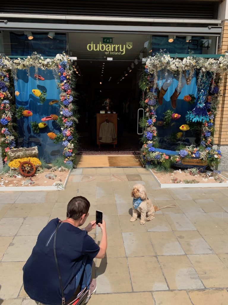 Flowers In Front of Dubarry