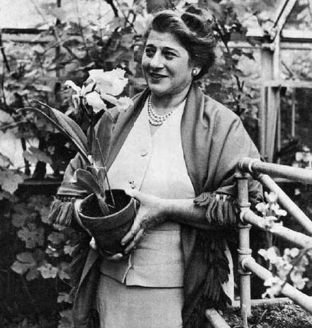 Chanukah Bush Started by TV and Radio Pioneer Gertrude Berg since in her Bedford greenhouse